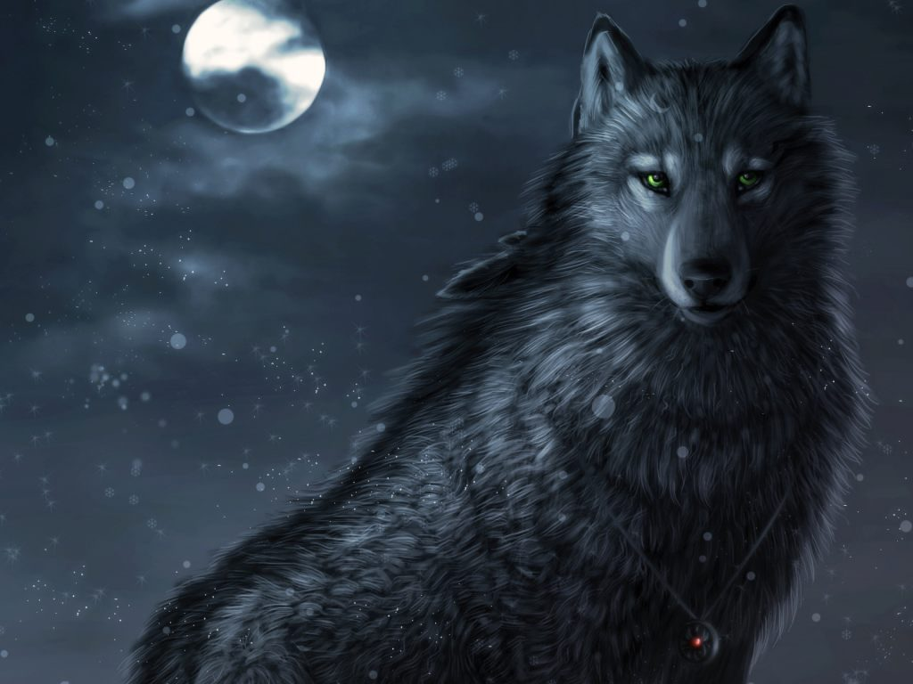Волки 75 фото  Релаксик