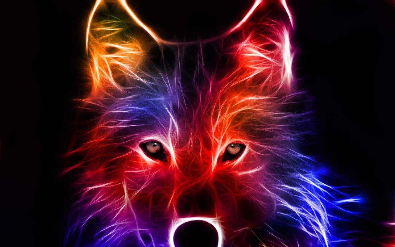 Lobo artístico de colores - 1280x800 :: Fondos de pantalla y wallpapers