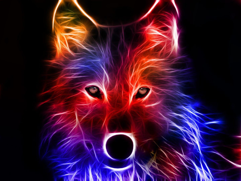 Lobo artístico de colores :: Imágenes y fotos